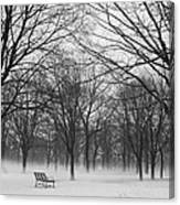 Monarch Park Ground Fog Canvas Print