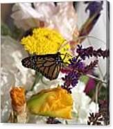 Monarch Vertical...   # Canvas Print