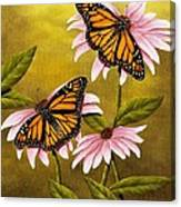 Monarchs And Coneflower Canvas Print