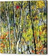 Monet Lives On Canvas Print