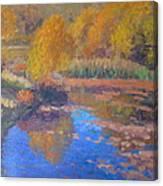 Monets Pond. Whitechapple Canvas Print