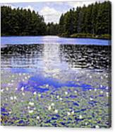 Monet's Prelude Canvas Print