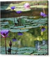 Monet's Waterlily Pond Number Two Canvas Print