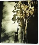 Money Plants Really Do Cast Shadows Canvas Print
