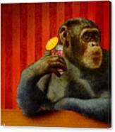 Monkey Bars...she Said... Canvas Print