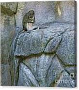 monkey I Canvas Print