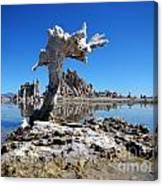Mono Lake 5709 Canvas Print