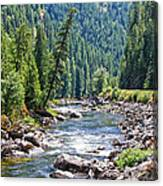Montana River And Trees Canvas Print