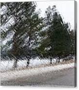 Montana Weather Report Canvas Print