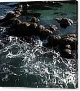 Monteray Bay Canvas Print