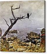 Monterey Mist Canvas Print