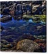 Monterey Pool Canvas Print