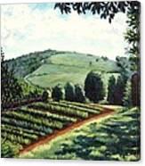 Monticello Vegetable Garden Canvas Print