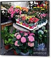 Montpellier Flower Shop Canvas Print