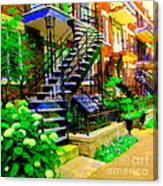Montreal Staircases Verdun Stairs Duplex Flower Gardens Summer City Scenes Carole Spandau Canvas Print