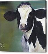 Moo-lah Canvas Print