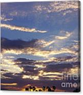 Moody Desert Sunrise Canvas Print