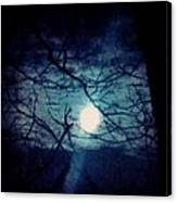 Moon Framed By Tree Branches Canvas Print