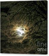 Moon Light With Clouds Canvas Print