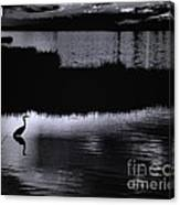 Moon N Ma Bird 2 Canvas Print