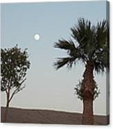 Moon Over Baja Desert Canvas Print