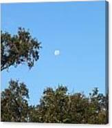 Moon Over Brandon Canvas Print