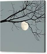 Moon Peaking Thru At 5pm Canvas Print