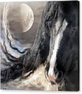 Moonlight And Valentino Canvas Print