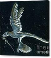 Moonlight hunt - Microraptor Canvas Print