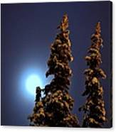 Moonlight In Lapland Canvas Print