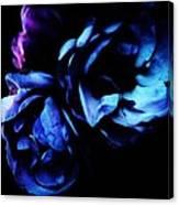 Moonlight Rose Canvas Print