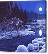 Moonlight Visitors Canvas Print