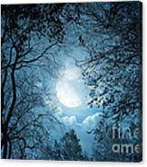 Moonlight With Forest Canvas Print