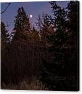 Moonlit Evening Canvas Print