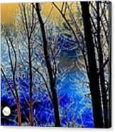 Moonlit Frosty Limbs Canvas Print