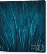 Moonlit Grass Canvas Print