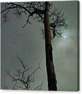 Moonlit Marks On A Ground Glass Canvas  Canvas Print