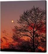 Moonset Canvas Print