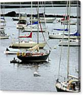 Moored At Kittery Point Maine Canvas Print