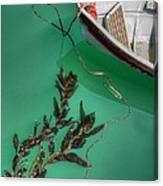 Moored Boat And Kelp Canvas Print
