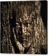 Morgan Freeman Roots Digital Painting Canvas Print