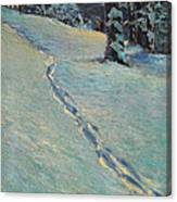 Morning After Snow Canvas Print