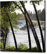 Morning At Idaho Falls Canvas Print