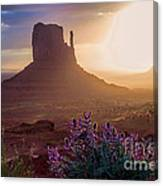 Morning Bloom Canvas Print