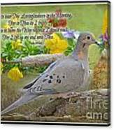 Morning Dove With Verse Canvas Print