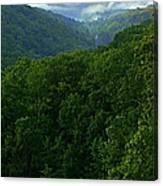 Morning Fog On Blue Ridge Canvas Print