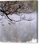 Morning Fog Over Lake Canvas Print