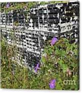 Morning Glories And Crab Traps Canvas Print