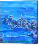 Morning Gulls Canvas Print