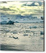 Morning Ice Flow Canvas Print